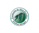 Fundación de Altos Estudios Esteban Adrogué